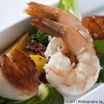 Shrimp & Scallop Boat